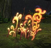 Golden Grass Plant.png