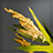 Rice (Raw) Icon.png