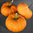 Pumpkin Icon.png