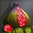 Peach Flower Fruit Icon.png