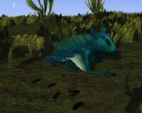 Yosei Lizard.jpg