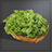 Vegetable Icon.png