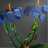 Blue Anemone Icon.png