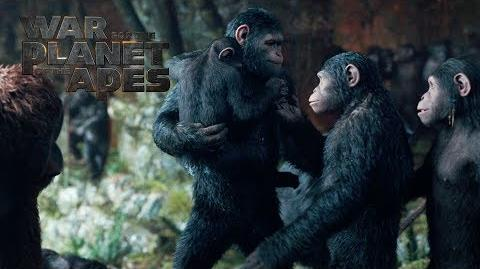 "War for the Planet of the Apes ""To Protect My Family"" TV Commercial 20th Century FOX"
