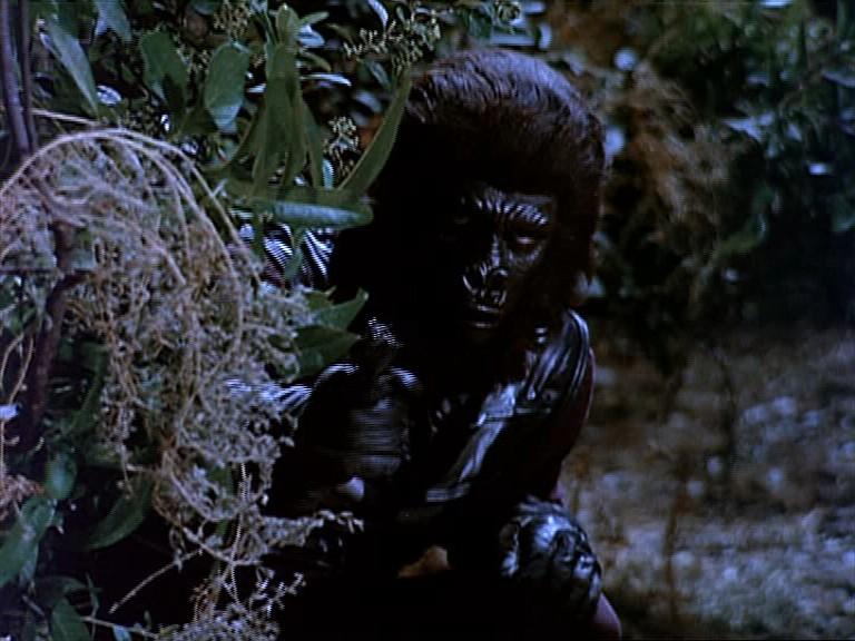 Gorilla guard 3