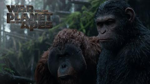 War for the Planet of the Apes Extended Preview 20th Century FOX
