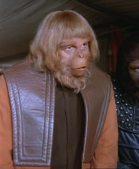 "Orangutan (""The Cure"")"