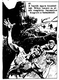 Levain is killed by apes; illustration by Erno Zorad