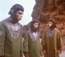 Cornelius, Lucius & Zira at the cave site