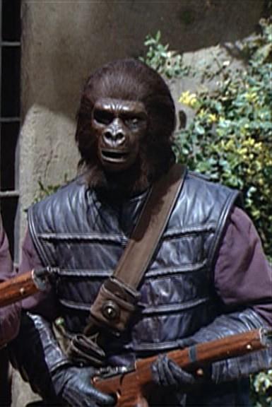Second gorilla