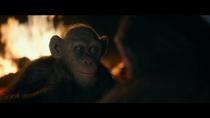 WPOTA Bad Ape 5.png