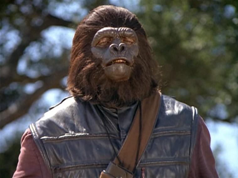 Signal operator gorilla