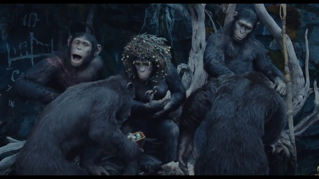 Royal Ape Family