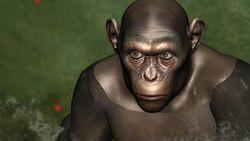 CG Chimp 2.jpg