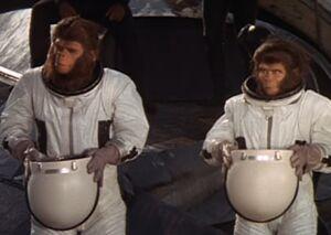 Cornelius and Zira arrive at their destination