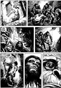 Aldo and Caesar in Marvel's Conquest of the Planet of the Apes; illustration by Alfredo Alcala