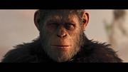 WPOTA Caesar's last look at his tribe before passing.png