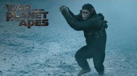 "War for the Planet of the Apes ""Fight"" TV Commercial 20th Century FOX"