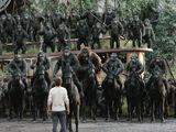 Caesar's Ape Army (CE)