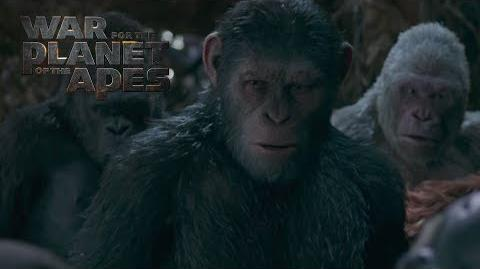"War for the Planet of the Apes ""Winner Takes All"" TV Commercial 20th Century FOX"