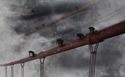 19SF259-Aerial Bridge Apes V04-lower-550x337.jpg