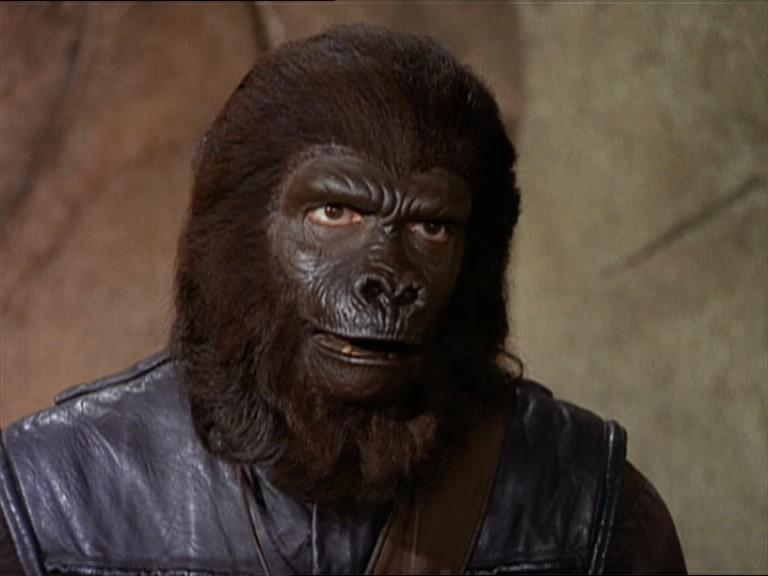 Second police gorilla