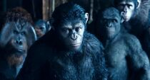 Dawn-Of-The-Planet-Of-The-Apes-10.jpg