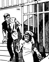 Zira leads Ulysse to freedom; illustration by Erno Zorad