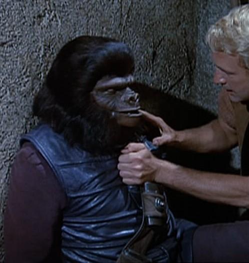 Gorilla worker