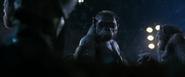 WPOTA an ape who looks like Stone
