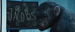 Rise of the Planet of the Apes koba.png