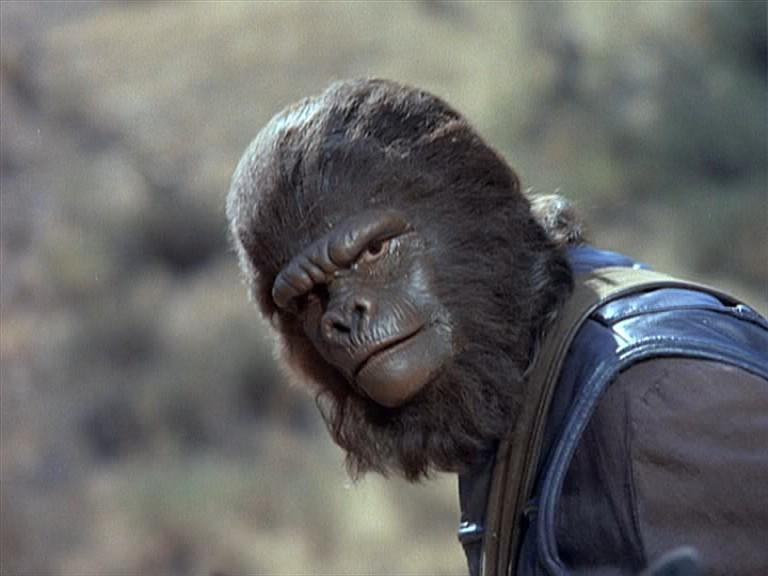 Second gorilla guard