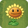 PVZIAT Sunflower.png