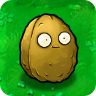 Wall-nut2.png