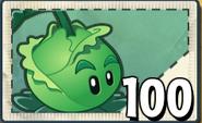 Cabbage-pultPvZ2SeedPacket