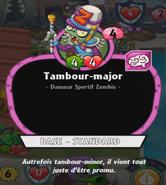 PvZH Tambour Major