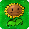 1Giant Sunflower1.png