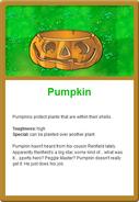 331px-Pumpkin Online