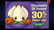 Pumpkins and Power Lily