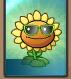 Sunflower Online Costume