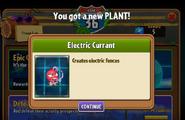 Electric Currant Got