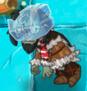 Iceblock 1st degrade