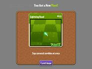 New-Plant-Lightning-Reed