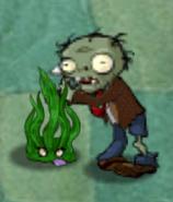 Bramble Sea Grass 3