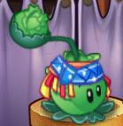 CabbageCostumeO22