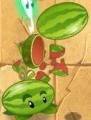 PvZ2 Melon-pult Attacks