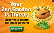 Sunflower's Ads