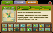 Almanac Cabbage