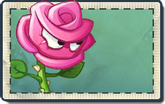 Rose Seed Packet.png
