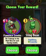 Flamenko choosing